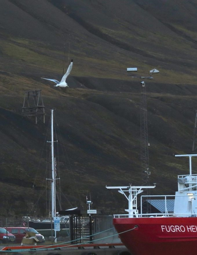 Longyearbyen Harbour